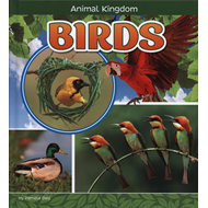 Produktbilde for Birds (BOK)