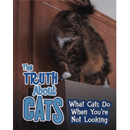 Truth about Cats (BOK)
