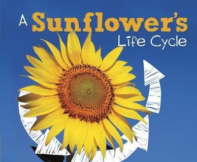 Sunflower's Life Cycle (BOK)