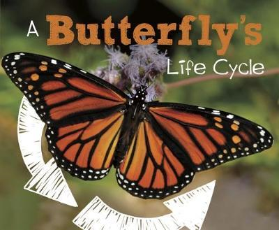 Butterfly's Life Cycle (BOK)
