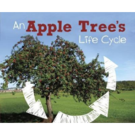 Apple Tree's Life Cycle (BOK)