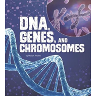 DNA, Genes, and Chromosomes (BOK)