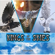 Kings of the Skies (BOK)