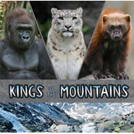 Kings of the Mountains (BOK)