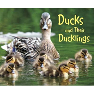 Ducks and Their Ducklings (BOK)