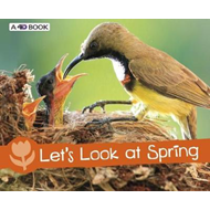 Let's Look at Spring (BOK)