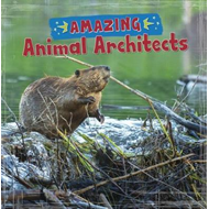 Amazing Animal Architects (BOK)