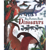 Big Picture Book of Dinosaurs (BOK)