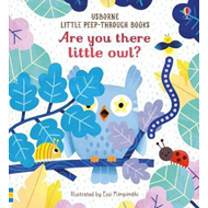 Produktbilde for Are You There Little Owl? (BOK)