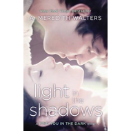 Light in the Shadows (BOK)