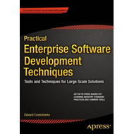 Practical Enterprise Software Development Techniques (BOK)