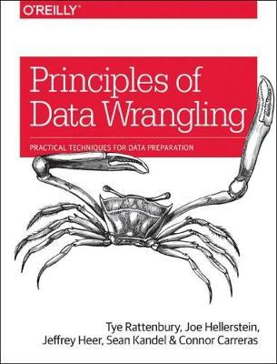 Principles of Data Wrangling (BOK)