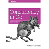 Concurrency in Go (BOK)