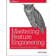 Feature Engineering for Machine Learning Models (BOK)