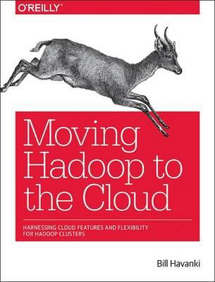Moving Hadoop in the Cloud (BOK)