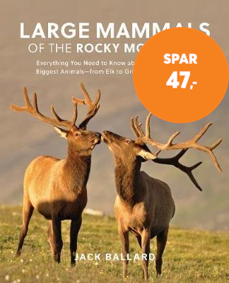 Large Mammals of the Rocky Mountains - Everything You Need to Know about the Continent's Biggest Ani (BOK)