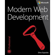 Modern Web Development (BOK)