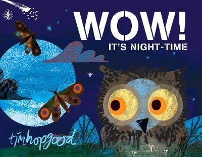 Wow! It's Night-Time (BOK)