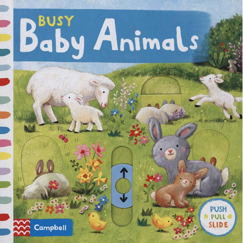 Busy Baby Animals (BOK)