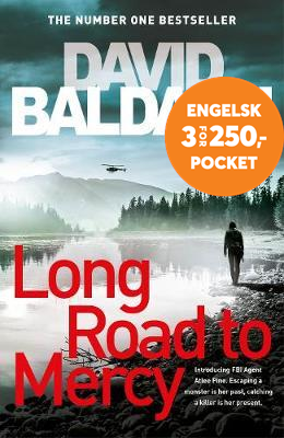 Long Road to Mercy (BOK)