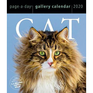 Produktbilde for Cat Page-A-Day Gallery Calendar 2020 (BOK)