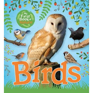 My First Book of Nature: Birds (BOK)