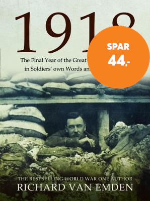 1918: The Final Year of the Great War to Armistice (BOK)