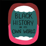 Black History in Its Own Words (BOK)