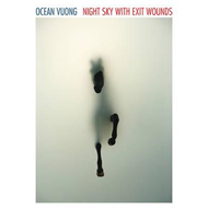 Night Sky with Exit Wounds (BOK)