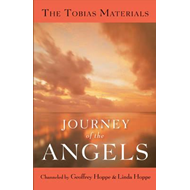 Journey of the Angels (BOK)