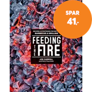 Produktbilde for Feeding the Fire (BOK)