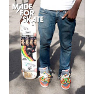 Made for Skate: The Illustrated History of Skateboard Footwear (BOK)