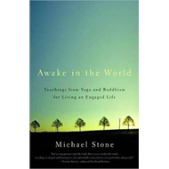 Awake in the World (BOK)