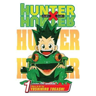 Hunter x Hunter, Vol. 1 (BOK)
