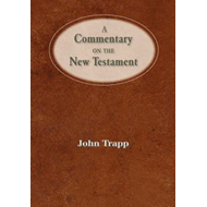 Commentary of the New Testament (BOK)