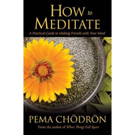 How to Meditate (BOK)