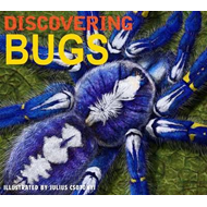 Discovering Bugs (BOK)