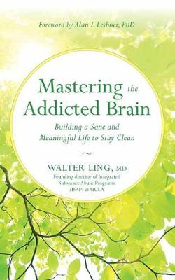 Mastering the Addicted Brain (BOK)