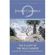 Flight of the Wild Gander (BOK)