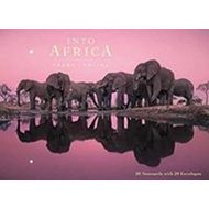 Into Africa: Blank Boxed Notecards (BOK)