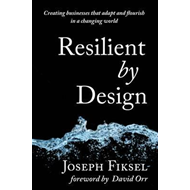 Resilient by Design (BOK)