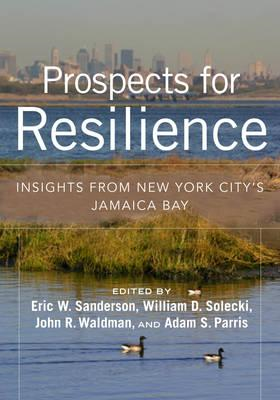 Prospects for Resilience (BOK)