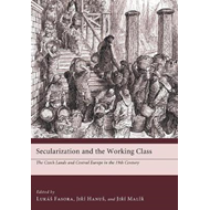 Secularization and the Working Class (BOK)