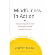 Mindfulness in Action (BOK)