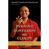 Turning Confusion Into Clarity (BOK)