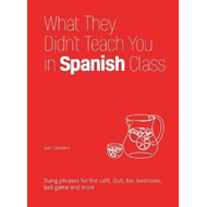 What They Didn't Teach You in Spanish Class (BOK)