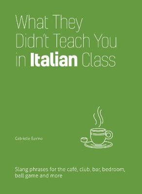 What They Didn't Teach You in Italian Class (BOK)