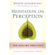 Meditation on Perception (BOK)