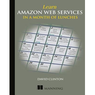 Learn Amazon Web Services in a Month of Lunches (BOK)