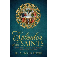 Splendor of the Saints (BOK)